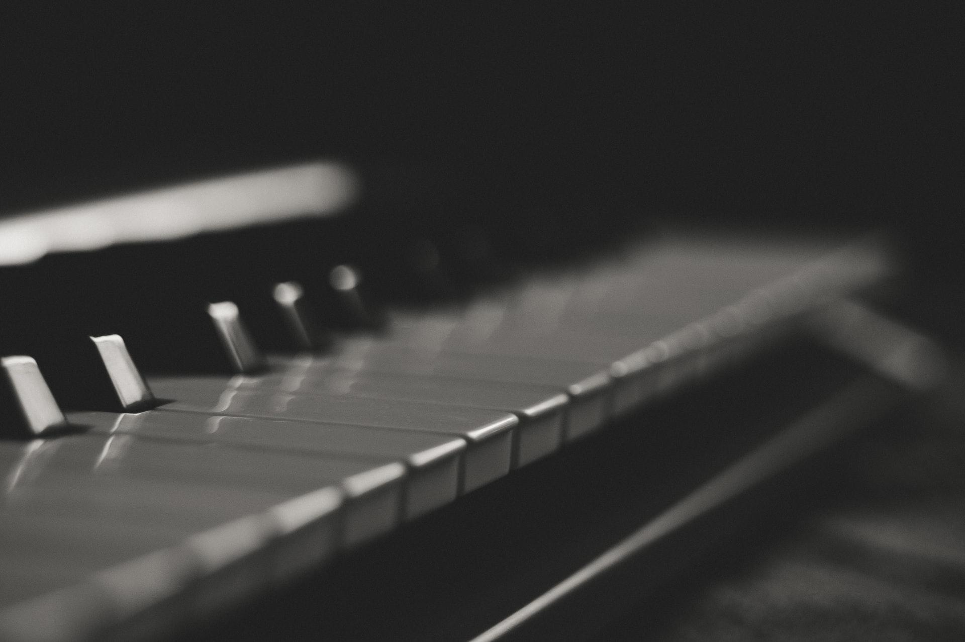 leonardo da vinci musica